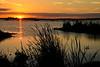 Sunset-EmeraldaMarsh-3-29-19-SJS-001