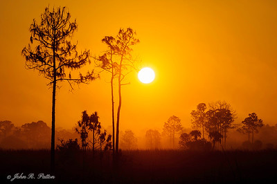 Big Cypress sunset