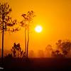 Big Cypress sunset