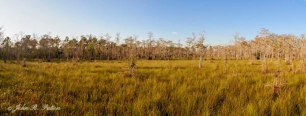 Big Cypress prairie