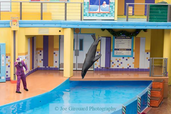 SeaWorld 2019