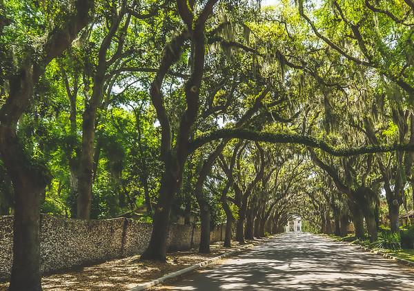 Florida Roadtrip Pics