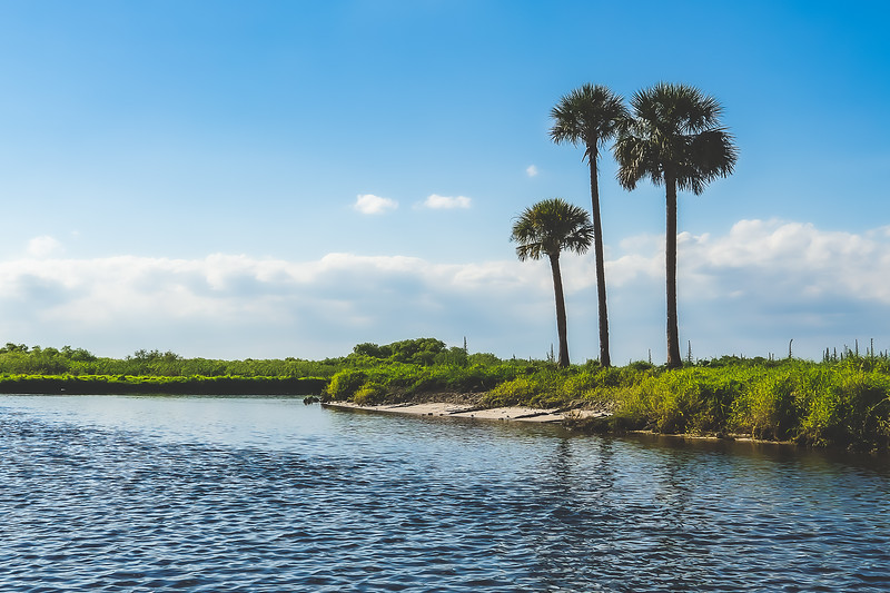 Along the St. Johns River in Brevard County Florida