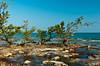 Hurricane damage on the shoreline in the Florida Keys, Florida, USA.