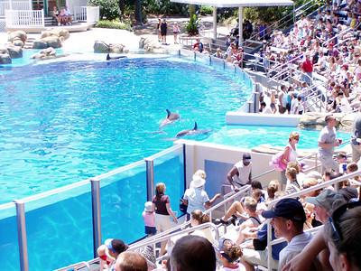 15   SeaWorld - Orlando