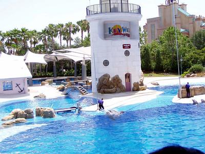 20   SeaWorld - Orlando