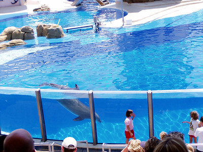 16   SeaWorld - Orlando