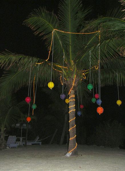 Christmas In Florida Keys.Valhalla Point Crawl Key Sombrero Beach Marathon Florida