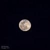 Full Pink Moon 4/11/2017