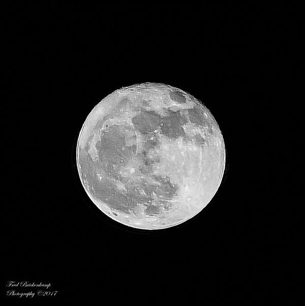 """Full """"Beaver"""" Moon"""