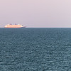 New Years Eve Sailings from Port Canaveral, 12/31/2016. Port Load 16,058.