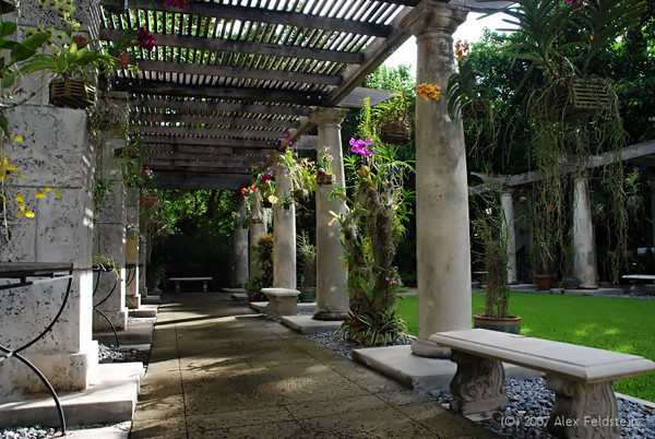 The orchid garden
