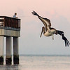 Fort Myers Beach Pier (107)