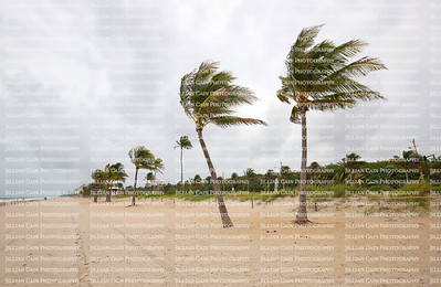 Storm clouds, rain and wind bring dangerous weather conditions to Fort Lauderdale Beach in Florida, USA.