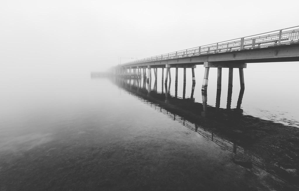 Fog in Dunedin