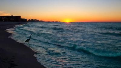 Destin 2016 (1302)-300 O'Steen Beach