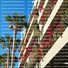 Bougainvilleas blooming on balconies