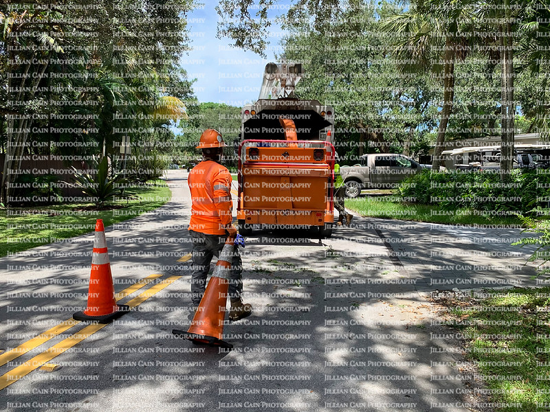 Arborist cleaning up after trimming dangerous tree branches over power lines.