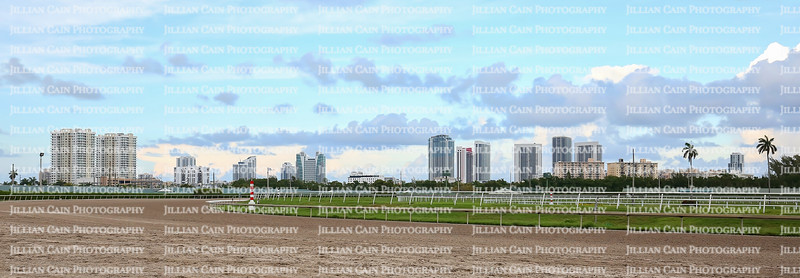 Panoramic view of Hallandale Beach skyline at dusk as seen from the racetrack.