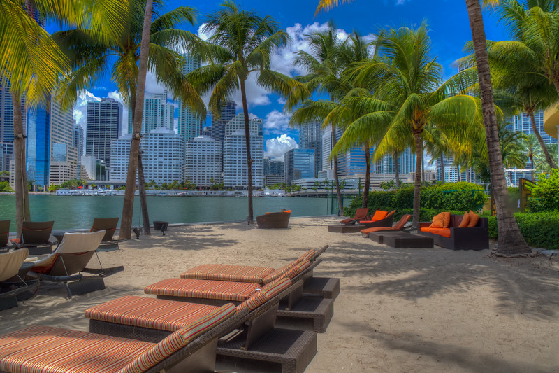 Under The Palm Trees, Downtown Miami
