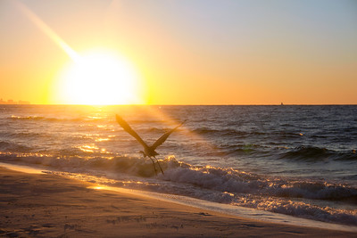 Henderson Beach, Destin, FL