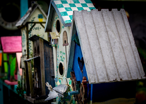 Birdhouse Row