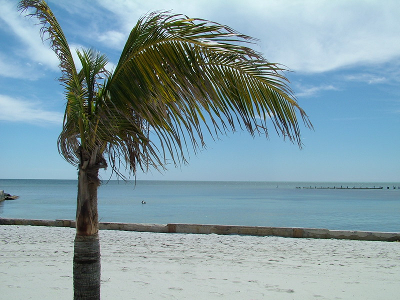 Clarence S. Higgs Memorial Beach - Key West, FL