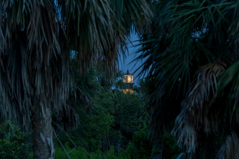 Jupiter Lighthouse peeking through the trees