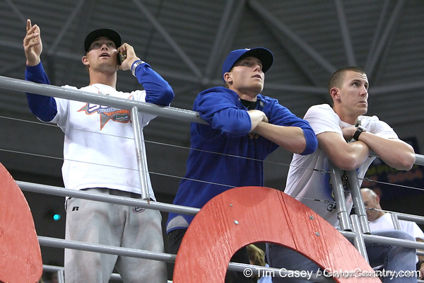 photo by Tim Casey<br /> <br /> Florida baseball players watch during the Gators' 195.925-193.850 win against the Kentucky Wildcats on Friday, January 30, 2009 at the Stephen C. O'Connell Center in Gainesville, Fla.