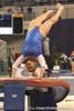 photo by Tim Casey<br /> <br /> Florida junior Courtney Gladys earns a 9.8 on the vault during the No. 1-ranked Gators' 196.50-196.25 win against the No. 4-ranked Auburn Tigers on on Friday, January 16, 2009 at the Stephen C. O'Connell Center in Gainesville, Fla.