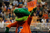 UF mascot Albert cheers with the crowds before the University of Florida Gators gymnastics meet against the University of Michigan Wolverines on Friday, March 6, 2009 in the Steven C. O'Connell Center. / Gator Country photo by Casey Brooke lawson