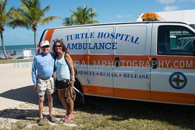Turtle-1059