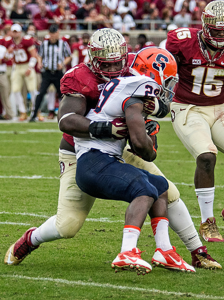 Timmy Jernigan wraps up Syracuse RB Devonte McFarlane for a loss as the #2 ranked Florida State Seminoles dominated Syracuse 59-3 Saturday at Doak Campbell stadium.  The Seminoles complete the 2013 home stand next weekend against Idaho before travelling to Gainesville to close out the regular season.