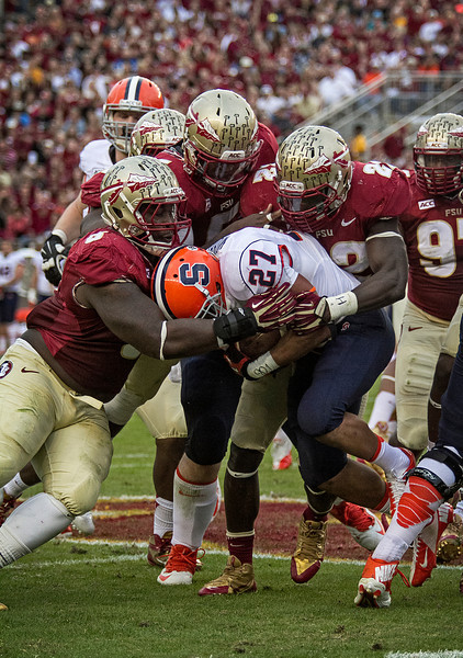 Syracuse running back George Morris II runs into a trifecta of trouble as he's met behind the line of scrimmage by Telvin Smith, Tim Jernigan, and Reggie Northrup.  The #2 ranked Florida State Seminoles dominated Syracuse 59-3 Saturday at Doak Campbell stadium.  The Seminoles complete the 2013 home stand next weekend against Idaho before travelling to Gainesville to close out the regular season.