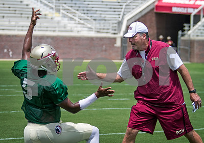 QB Randy Sanders and Jameis Winston exchange handshakes as the team stretches prior to scrimmage.