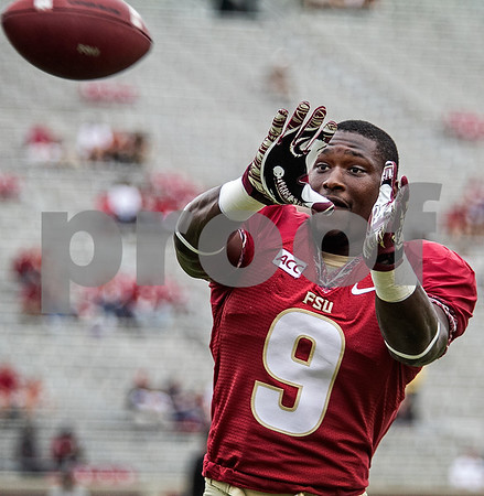 Karlos Williams warms up pre-game.  The Seminoles set a school record for most points scored as they dominated Idaho 80-14 in the last home game of the season.