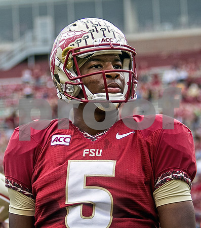 QB Jameis Winston led another great offensive showing as the Seminoles set a school record for most points scored as they dominated Idaho 80-14 in the last home game of the season.  Winston threw for 4 touchdowns on the day.