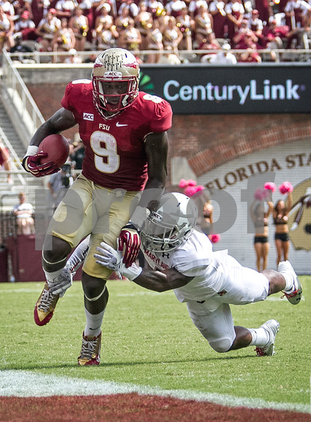 RB Karlos Williams runs past a Maryland defender Saturday as the Florida State Seminoles crushed the Maryland Terrapins 63-0 Saturday at Doak Campbell stadium.  The 'Noles will have a bye week next week and will spend the next two weeks preparing for the big showdown in Death Valley against the Clemson Tigers.