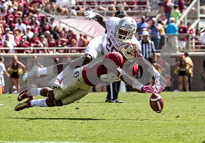 WR Rashad Greene stretches out to no avail as Maryland's Anthony Nixon breaks up a pass.  Greene led FSU in receiving yardage with 108 yards in only 4 receptions. The Seminoles crushed the Maryland Terrapins 63-0 Saturday at Doak Campbell stadium.  The 'Noles will have a bye week next week and will spend the next two weeks preparing for the big showdown in Death Valley against the Clemson Tigers.