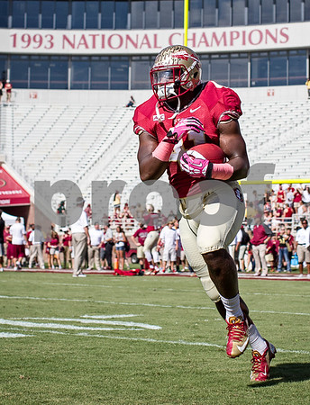 Lost in all the offensive fire-power is the play from FB Chad Abrams. Abrams has taken completely filled the role of a complete fullback, which was of some concern when Lonnie Pryor moved on to the NFL.  The Florida State Seminoles crushed the Maryland Terrapins 63-0 Saturday at Doak Campbell stadium.  The 'Noles will have a bye week next week and will spend the next two weeks preparing for the big showdown in Death Valley against the Clemson Tigers.