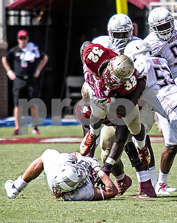 RB James Wilder Jr trucks Maryland LB Cole Ferrand. The Seminoles crushed the Maryland Terrapins 63-0 Saturday at Doak Campbell stadium.  The 'Noles will have a bye week next week and will spend the next two weeks preparing for the big showdown in Death Valley against the Clemson Tigers.