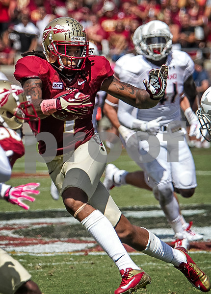 Kelvin Benjamin throws up a stiff arm as he gains yards after the catch. The Seminoles crushed the Maryland Terrapins 63-0 Saturday at Doak Campbell stadium.  The 'Noles will have a bye week next week and will spend the next two weeks preparing for the big showdown in Death Valley against the Clemson Tigers.