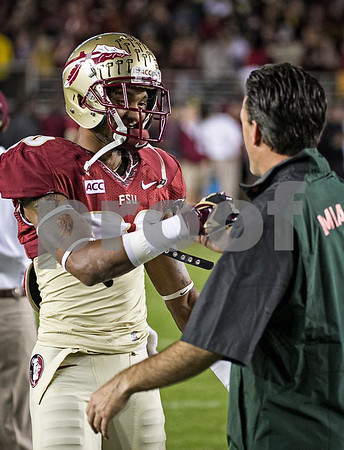 Former offensive coordinator James Coley returned to Doak Campbell stadium for the first time since becoming offensive coordinator at Miami.  Coley is responsible for much of the talent at Florida State as he served as recruiting coordinator and recruited the Miami area.  Rashad Greene is one of many Seminoles brought in by Coley.  The #3 ranked Florida State Seminoles defeated the #7 ranked Miami Hurricanes 41-14 Saturday night in a top 10 ACC match-up of unbeaten teams.