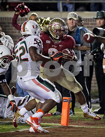 RB Devonta Freeman rushes for his 2nd TD.  Freeman led the team in rushing with 81 yards and 2 TD's as well as leading the team in receiving with 98 yards and 1 TD Saturday night as the #3 Florida State Seminoles defeated the #7 Miami Hurricanes 41-14.