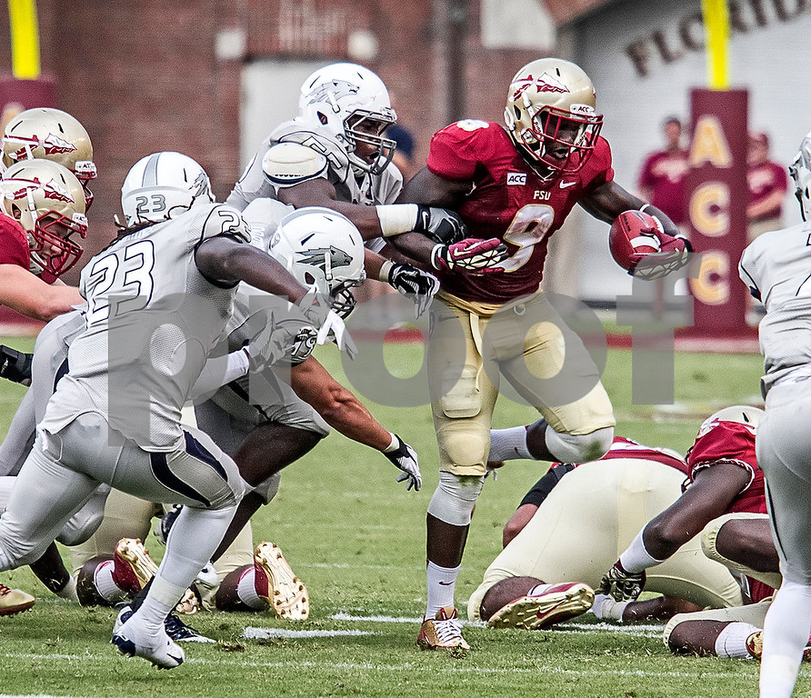 Fsu vs nevada 2013 chase photography voltagebd Image collections