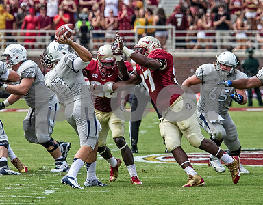 LB Telvin Smith and DL Demonte McAllister pressure back-up QB Devin Combs Saturday.  Combs got the call after it was determined starting QB Cody Fajardo would not play due to injury.  The Seminoles defeated the Wolfpack 62-7.