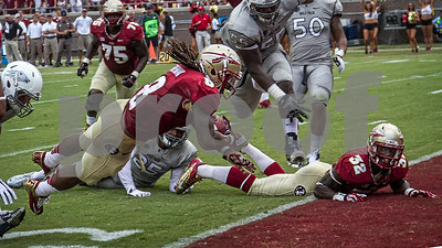 James Wilder Jr watches as fellow running back Devonta Freeman dives over the goal line for a TD.  Freeman carried the ball 9 times for 109 yards and a TD.  The Seminoles defeated the Wolfpack 62-7 Saturday to improve to 2-0 on the season.