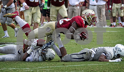 RB James Wilder Jr runs over two University of Nevada defenders.  Wilder finished with 45 yards on 6 carries. The Seminoles defeated the Wolfpack 62-7 Saturday as Florida State improved to 2-0 on the season.