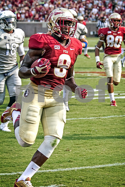 It was a great debut at running back for Karlos Williams as he had a game high 110 yards on just 8 carries. This run went for 65 and a TD.  The Seminoles defeated the University of Nevada 62-7 Saturday as Florida State improved to 2-0 on the season.