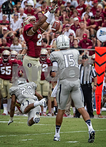 Defensive End Chris Casher elevates and knocks down a pass thrown by Nevada back-up QB Tyler Stewart.  Stewart started in place of injured QB Cody Fajardo. Florida State defeated the University of Nevada 62-7 Saturday as Florida State improved to 2-0 on the season.